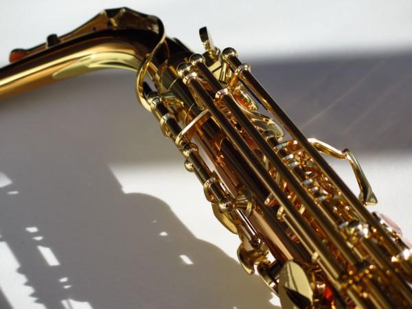 Sax alto Yanagisawa WO2 (13)