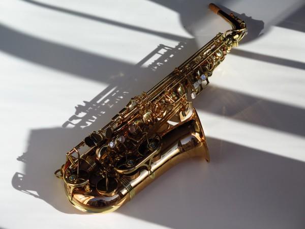 Sax alto Yanagisawa WO2 (4)