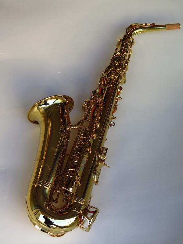 Sax alto Yanagisawa WO1 (6)