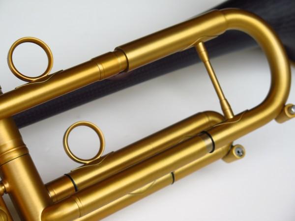 Trompette Sib Da Carbo brossée (4)