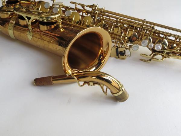 Saxophone alto Yanagisawa W 020 verni (2)
