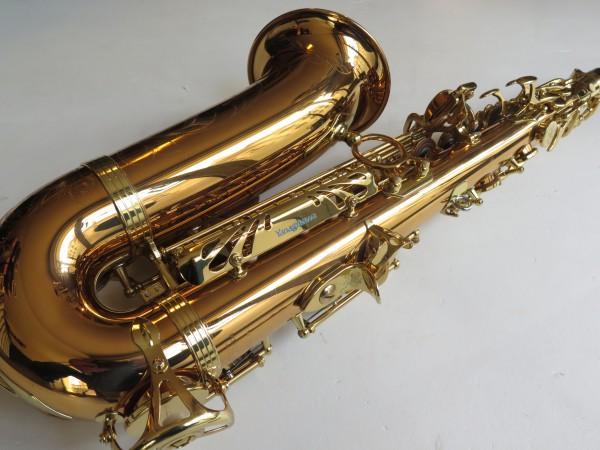 Saxophone alto Yanagisawa W 020 verni (9)