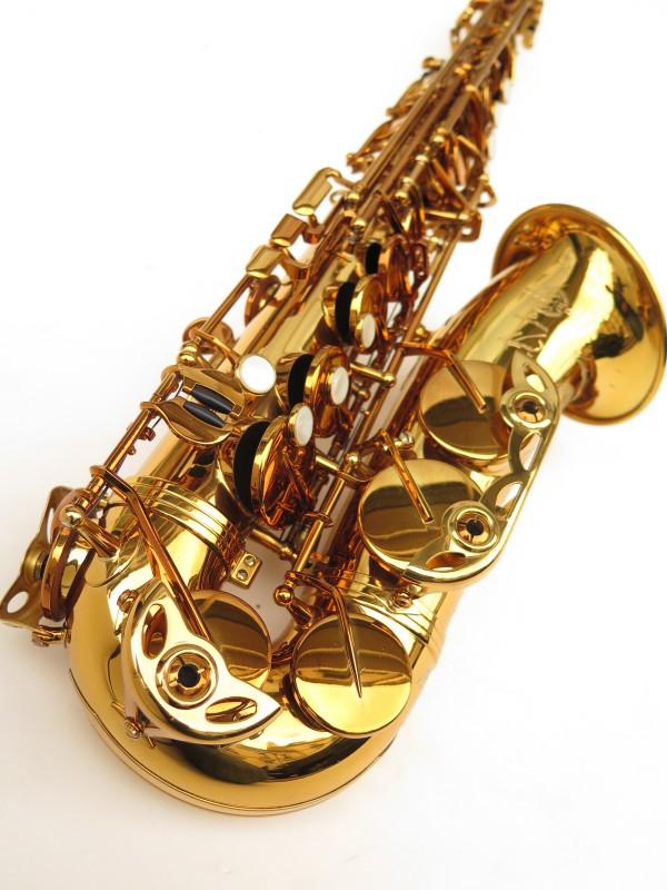 Saxophone alto Selmer Reference 54 verni gravé limited edition flamingo africa sans fa# (14)