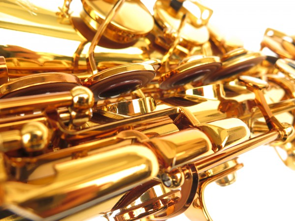 Saxophone alto Selmer Reference 54 verni gravé limited edition flamingo africa sans fa# (4)